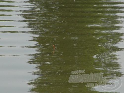 Jól súlyozott lapos úszó antennája, rossz látási viszonyok mellett