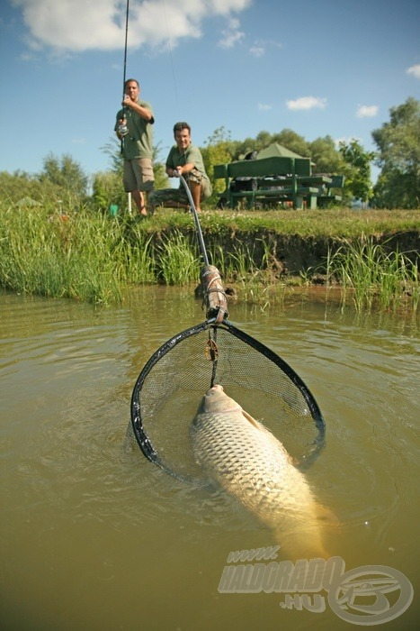 Igazi csapatmunka jellemzi kettejük horgászatát