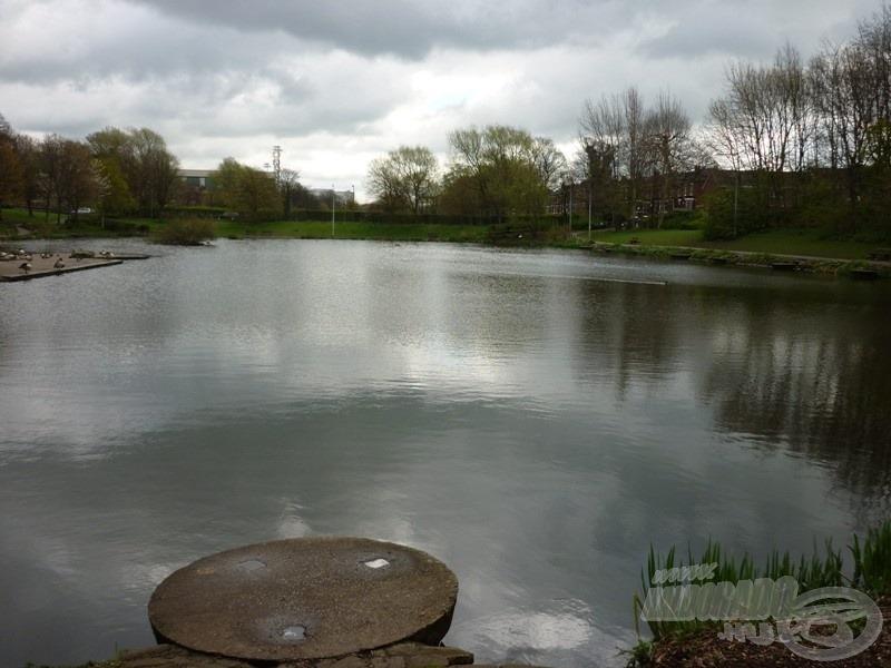 Gyönyörű környezetben tárult elém a tó. Itt máris éreztem, hogy nekem bizony horgásznom kell - ha törik, ha szakad!