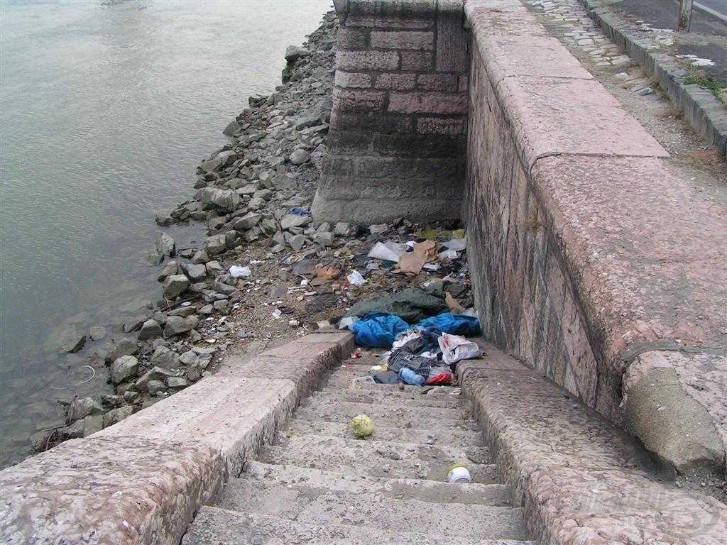 Amikor a sokadik helyen ez fogadott, az rendkívül feldühített! Sajnálom a hajléktalanokat, de a szegénység nem mentség arra, hogy ilyen gusztustalan környezetet teremtsenek maguk körül