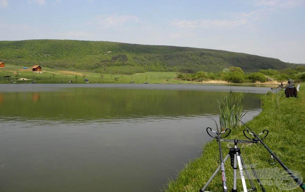 Olyan élményt okozott ez a tó és halai, amit nem fogok elfelejteni