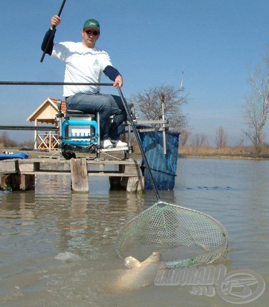 A termetesebb halak is lényegesen gyorsabban és biztonságosabban vezethetők szákba