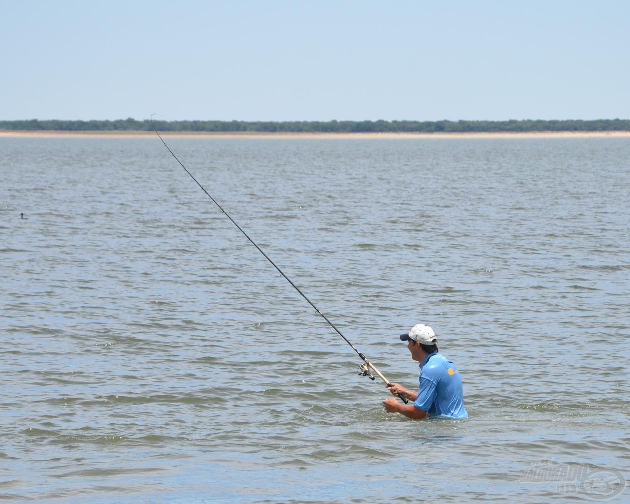 … és még ez a hal is meg volt! Hihetetlen! Nekünk a legkisebb hibát is halvesztéssel torolja meg a tározó!