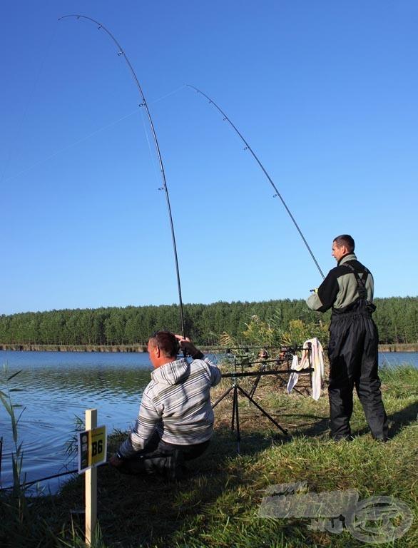 A Bor-Ben Team fáradhatatlanul fárasztotta, szákolta a halakat