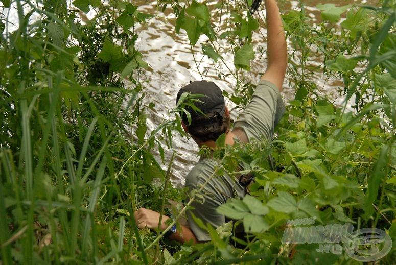 Még kb. 1 méter és leérek, a lábamat ugyanis még a szövevényes növényzet tartja fogságban