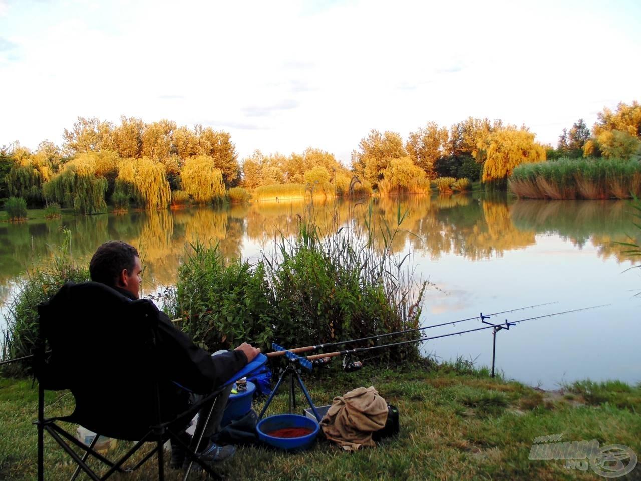 A horgászat első percei arról szóltak, hogy csodáltam a fürdő pontyokat