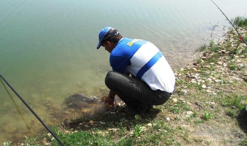 A tó törzsállománya nagyon gazdag, vigyázzunk rá, ha ide jövünk!