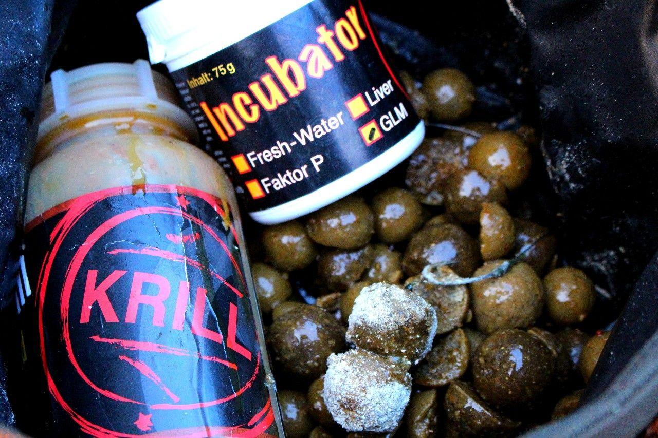 Krill liquidben áztatott GLM bojli