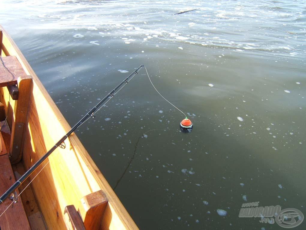 A csónak mellett, a kuttyogató mögött jön a csali