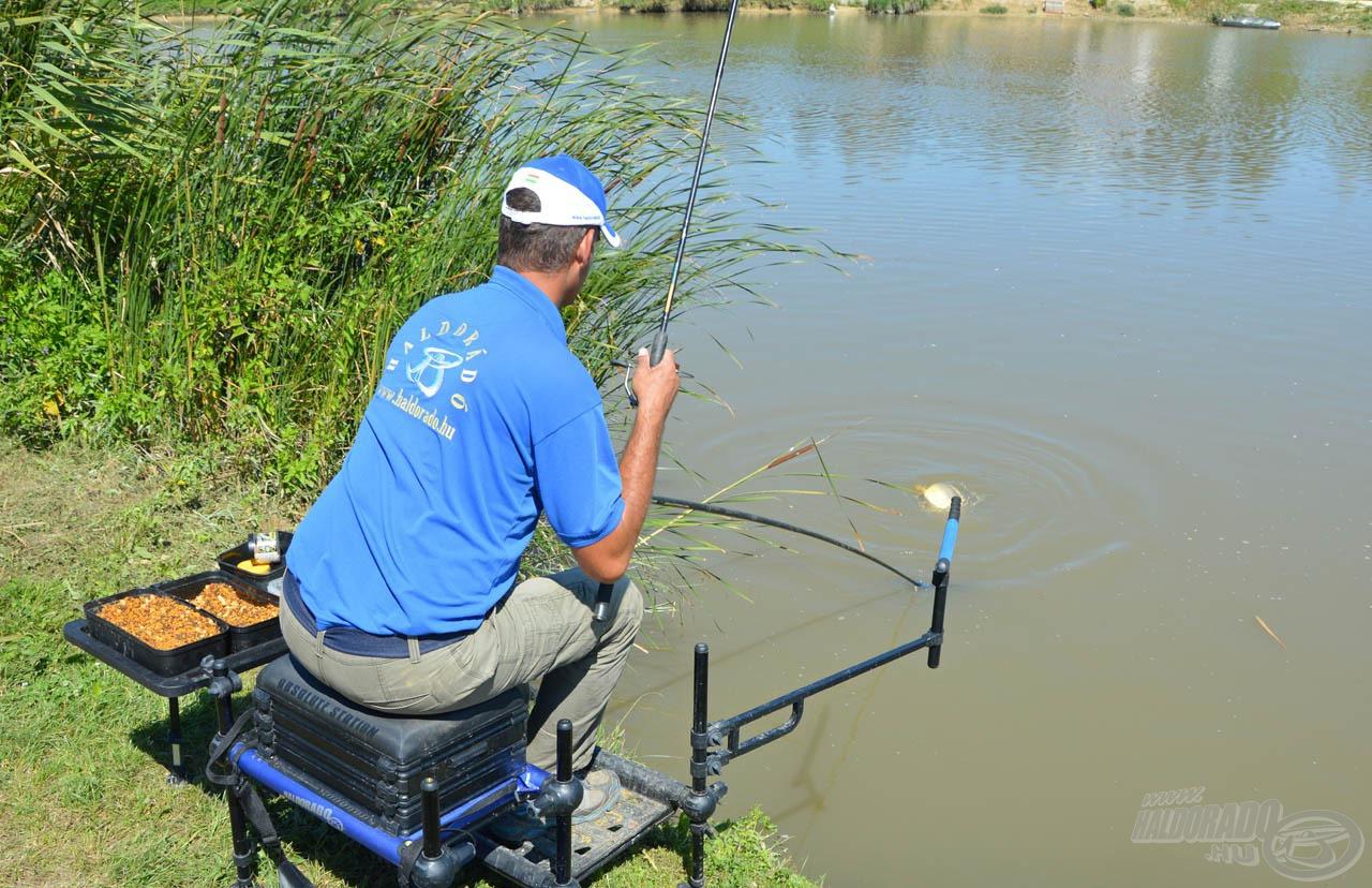 Miután az etetésen túl kifröcsögte magát a hal, nyugodtan bele lehet húzni a merítőbe!
