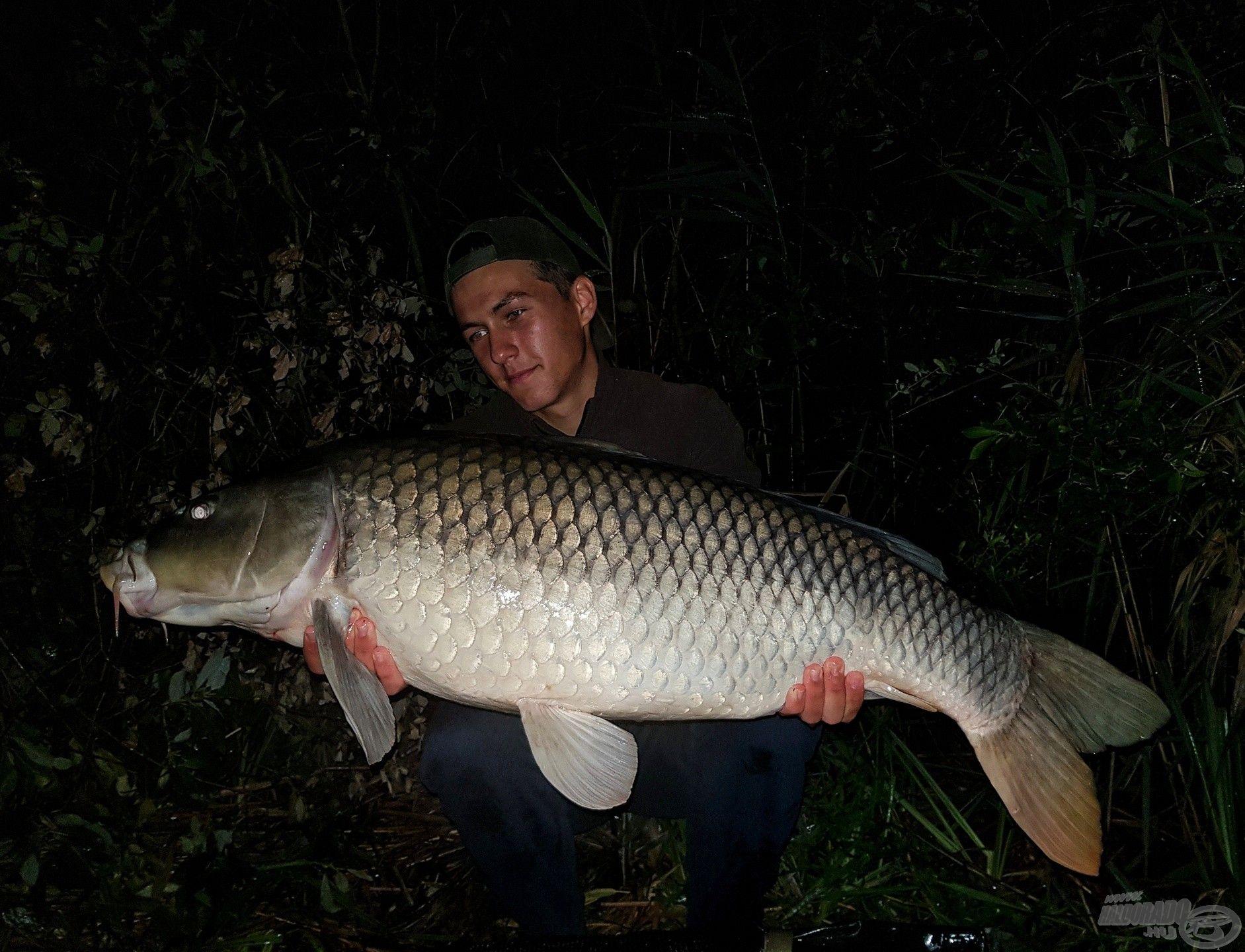 Az éjszaka utolsó hala…