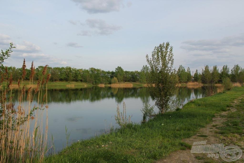 Régebbi, a természet és gondos kezek segítségével már gyógyulóban lévő kavicsbánya tó