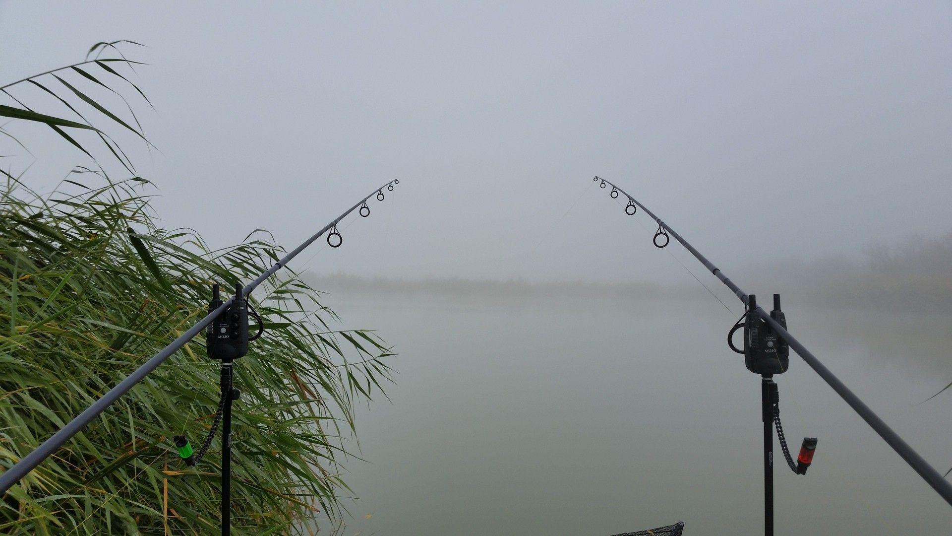 Már közel dél volt, mire megláttam a túlpartot a sűrű ködben