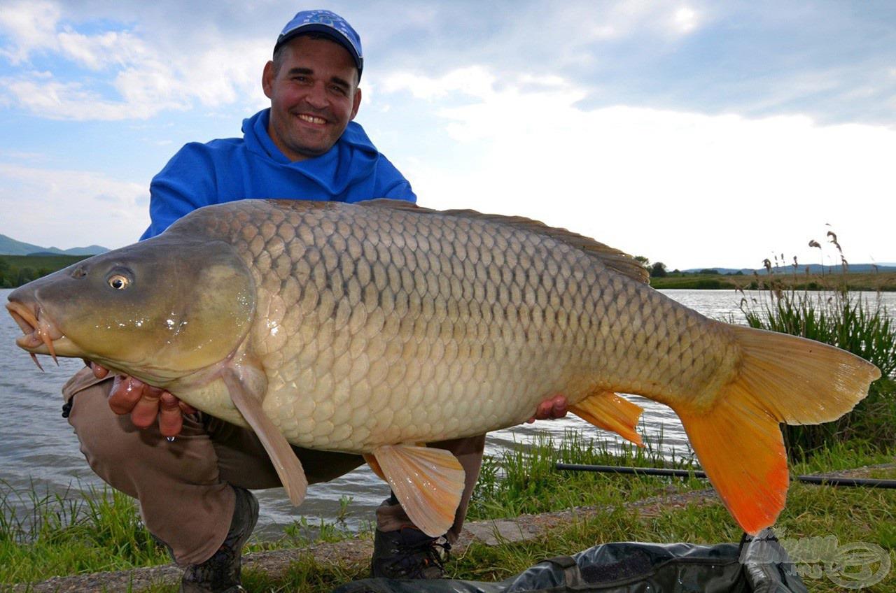 Ez a közel 20 kilós ponty is igazolja, hogy a kis csali néha nagy halat eredményez!