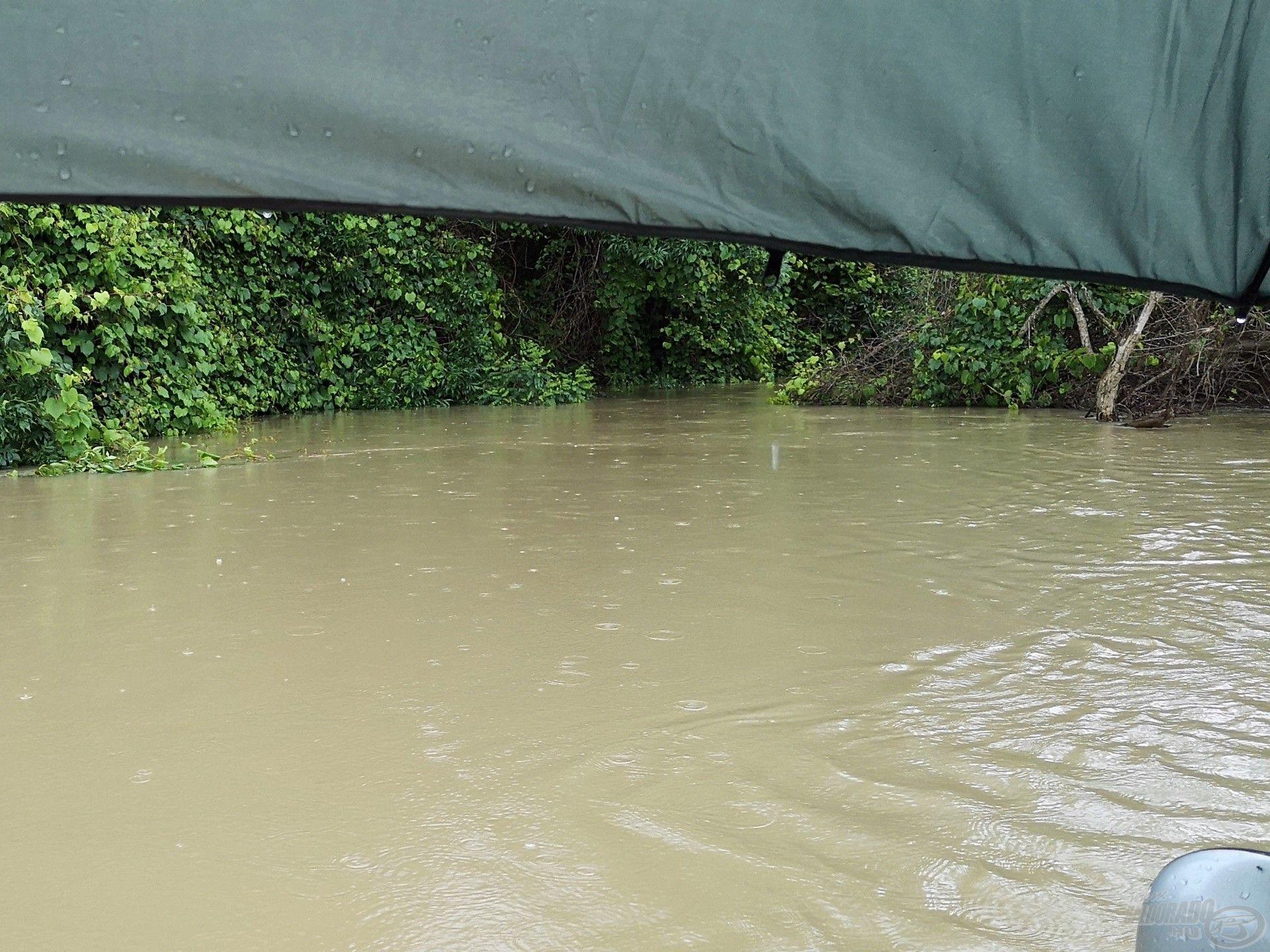 Zavaros tavaszi áradásban is van esélyünk, ha partszéli akadót vallatunk