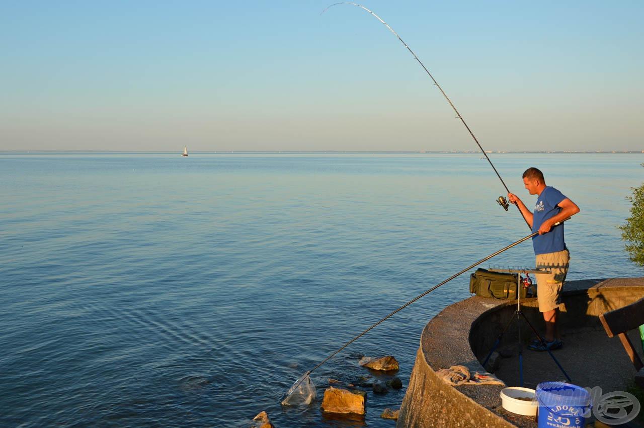 Másnap az esti kapás idejében aktívabbak lettek a halak