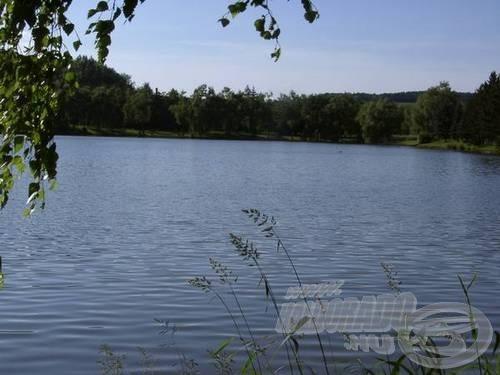 A víz egyenletes feltételeket teremt, a helyiek panaszkodnak is, hogy túl egyenleteset, ugyanis egy árva akadó sincs a tóban