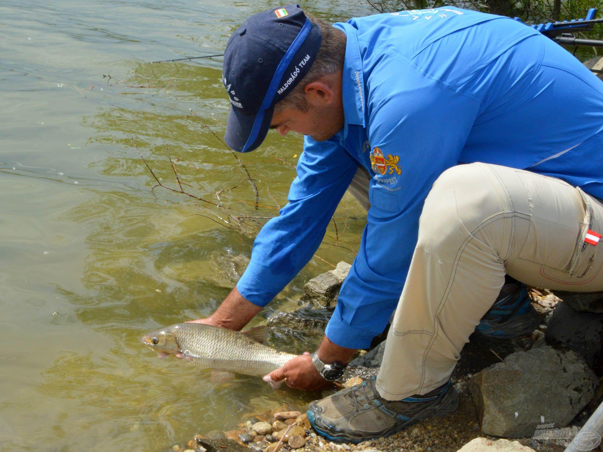Egy ilyen halat vétek kiszakítani a környezetéből!