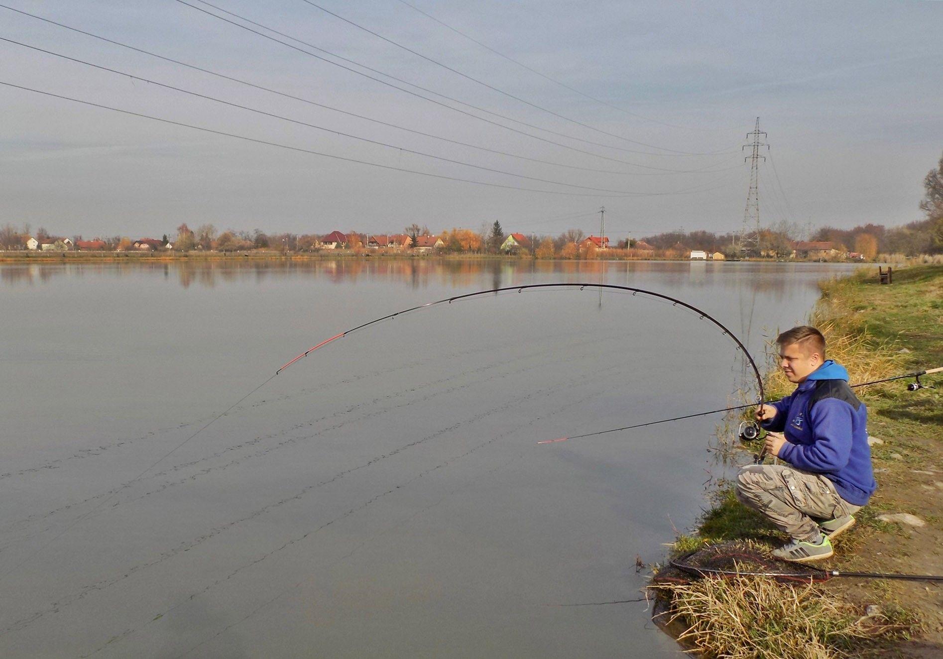 A halak olykor a dobástól számított 2-3 percen belül tekerték karikába (szó szerint…) feederbotjaimat. A Fine Carp feederbotokkal valóban minden hal fárasztása élményszámba megy