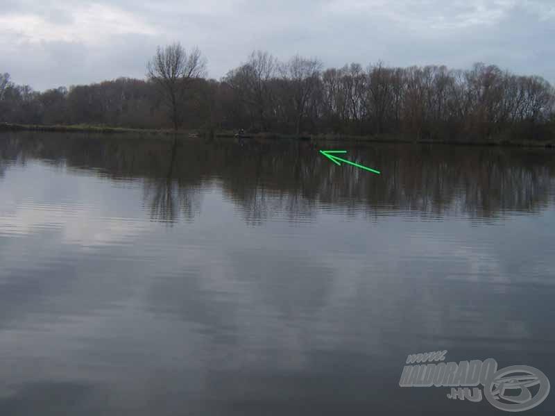 Ezen a képen a nyíl hegye mutatja az úszót…