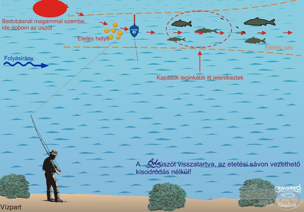 A képen próbáltam ábrázolni a Boló úszó működését és horgászatom vázlatát. A halak többségét a szaggatott vonallal jelzett területen fogtam, de a nagyobb testű dévérek az etetés alján jelentkeztek