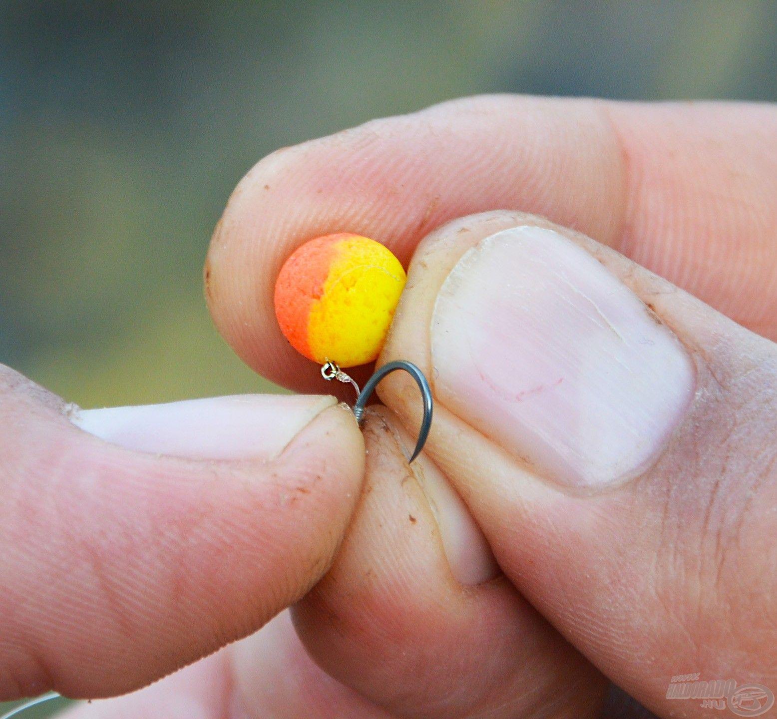 A kisebb méretű BlendeX Hydro golyócska akár a 12-es QM1 horog mellé is ideális