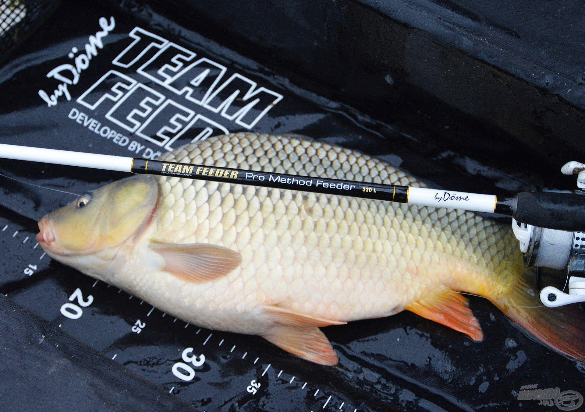Finomszerelékes method horgászoknak ajánlom ezt az összeállítást!