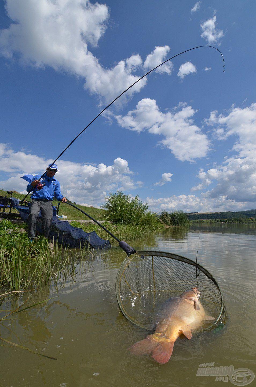 A nagyobb tavakon, gyakorta hosszabb várakozási idő után köszönt be a hőn áhított nagy hal, ezért nekik olyan csalogatóanyag kell, amely megvárja őket!