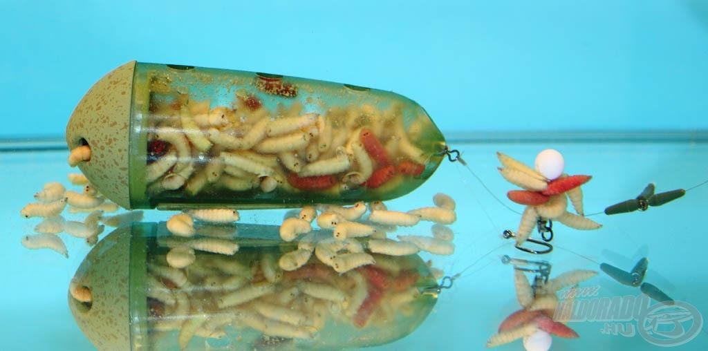 A csontik folyamatosan másznak ki a kosárból koncentrált élő csalis etetést hozva létre a horog körül