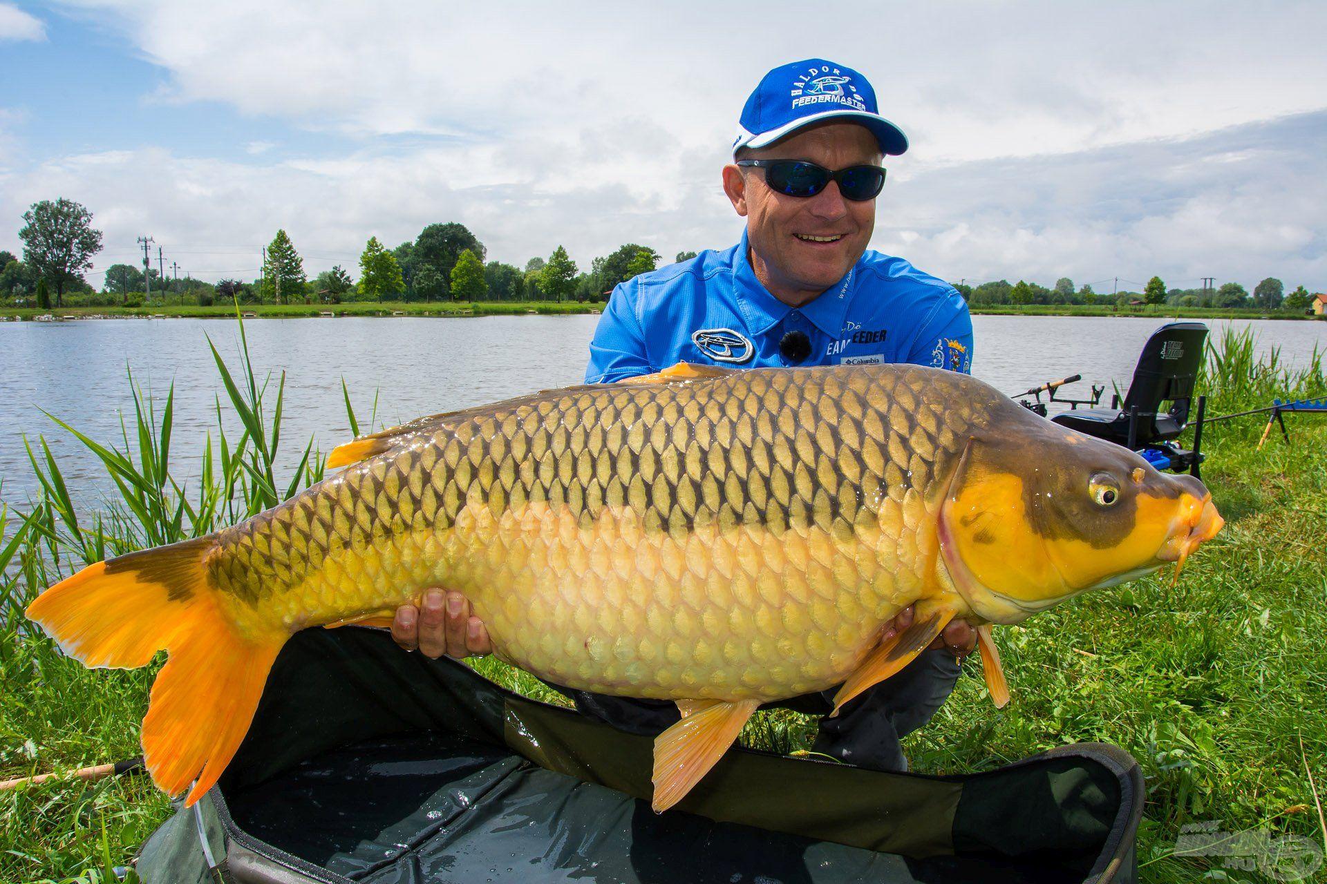 Jellemzően kb. 3 kg-os pontyok alkotják a tó állományának zömét, ugyanakkor ilyen különleges, nagy példányok is élnek a vízben