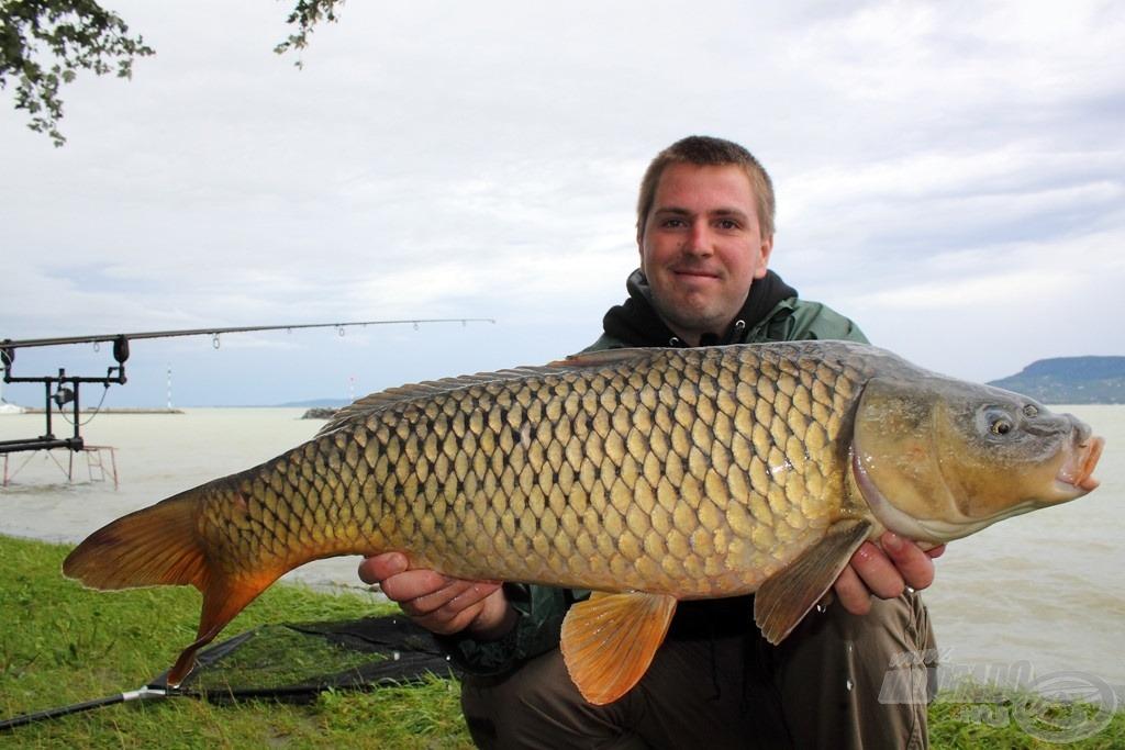 A túránk legszebb, majd 10 kilós pontya, amely megkoronázta első balatoni horgászatomat
