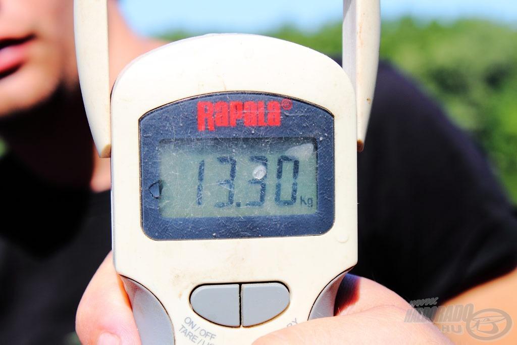 A mérleg pontosan 13,30 kg-ot mutatott!