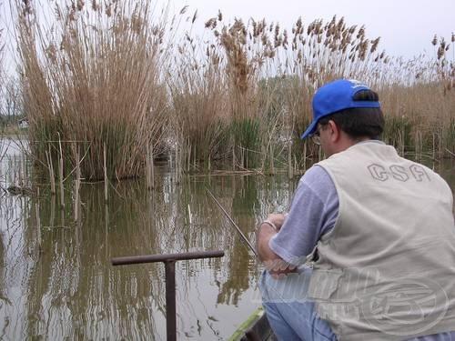 A halakra várva van idő gondolkodni