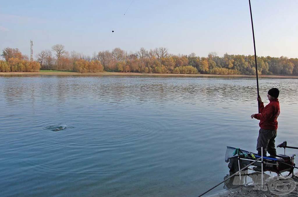 Amint a halat sikerül a part mellé irányítanom, gyorsan lerövidítek