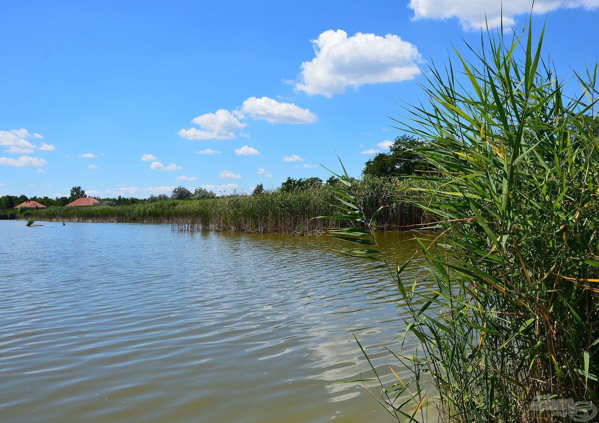 Rengeteg ígéretes hely és lehetőség kínálkozik innen a halak keresésére