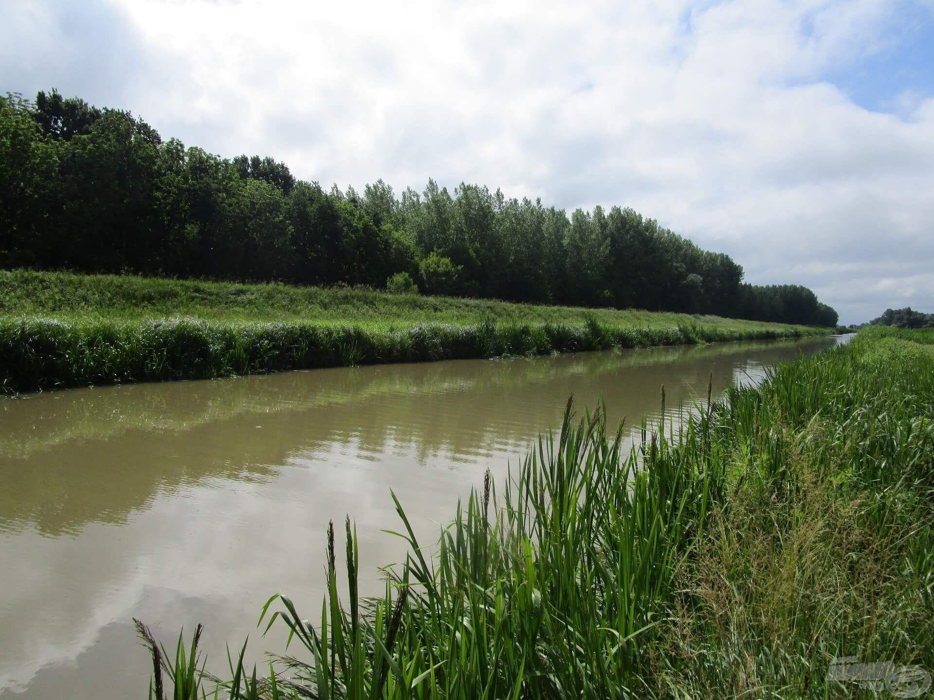 Nemcsak itt szoktam horgászni, de ez víz a legkedvesebb számomra!