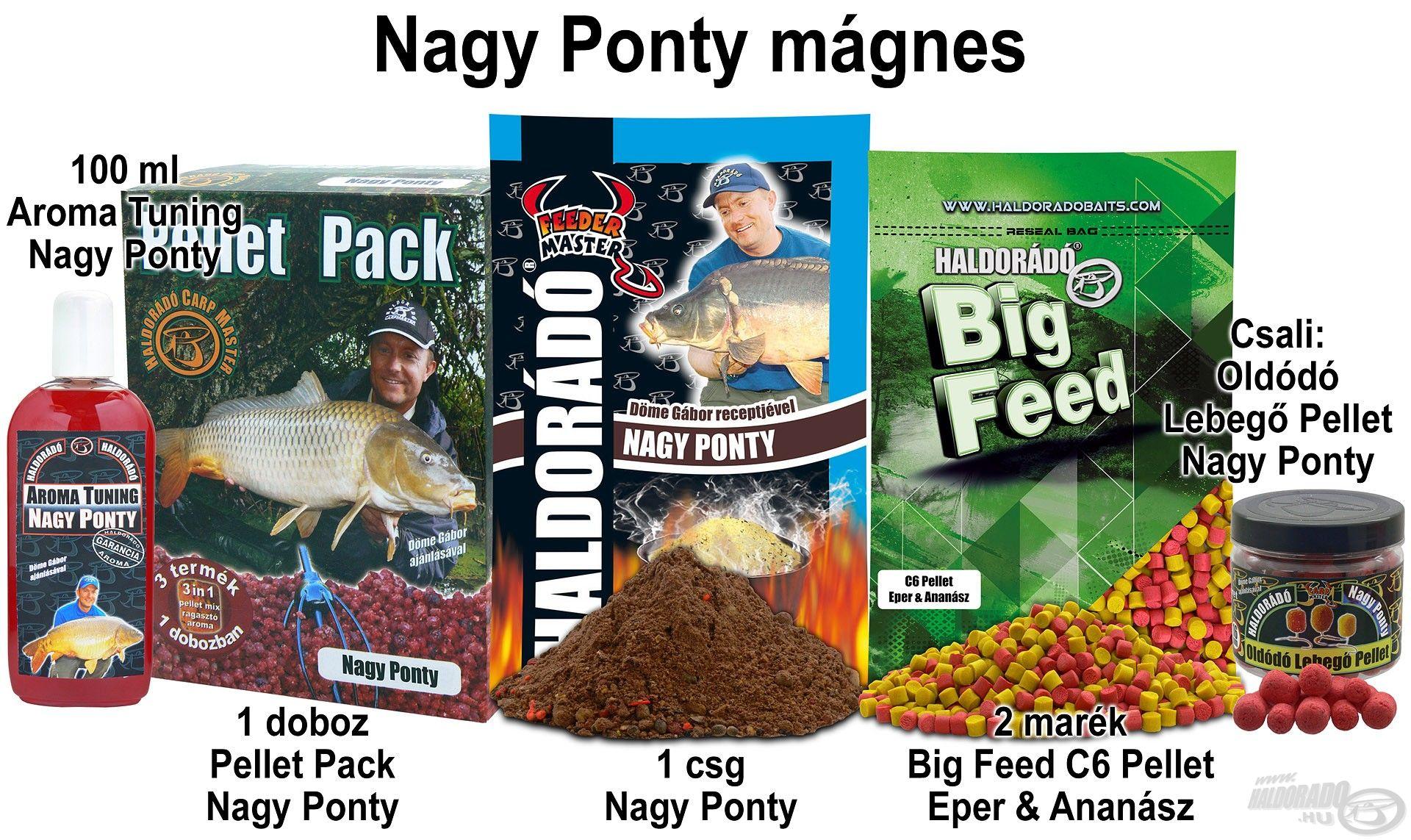 Nagy Ponty mágnes