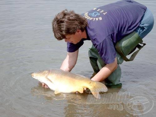 A bojlis jegyet váltók kötelesek minden halat visszaengedni a fényképezkedés után