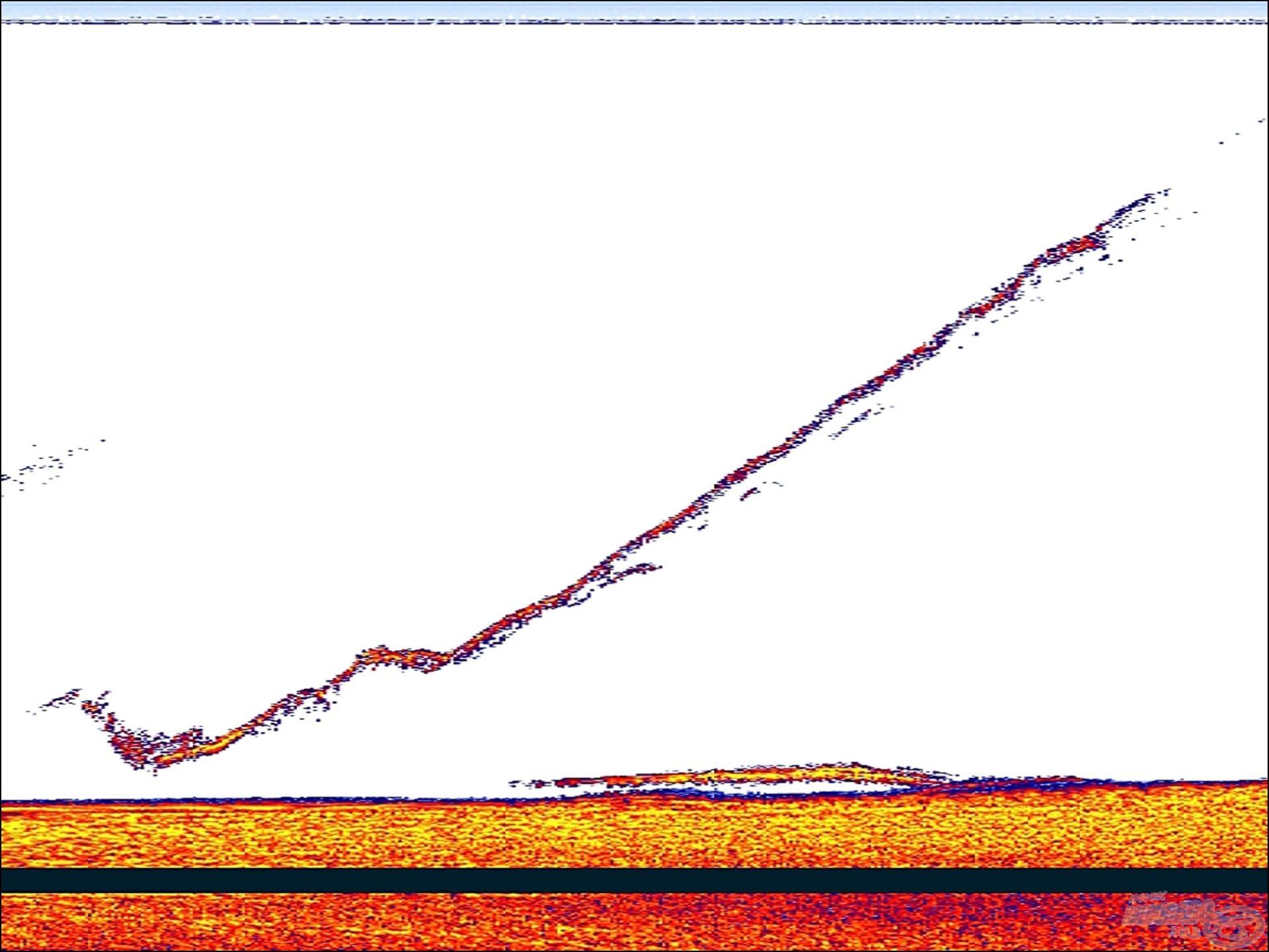 A horgon egy harcsa, alig nagyobb jelet produkál, mint az előző képen a csali. Ahogy kezd kikerülni a jeladó alól, csökken a jel intenzitása