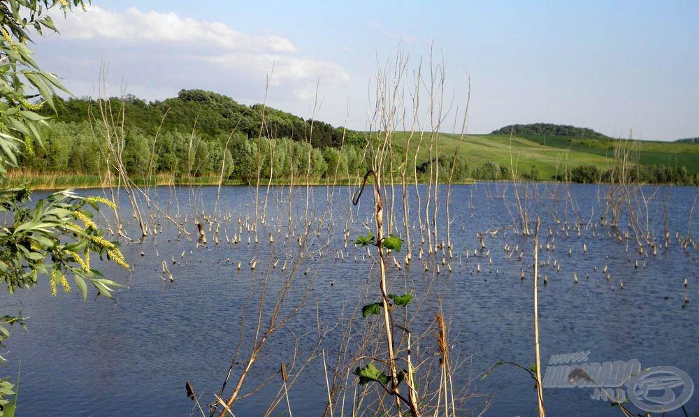 A tavat akadók tarkítják, ez adja a kihívást a horgásznak