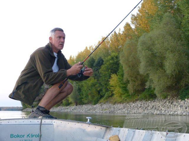 Gyakran felkuporodom a csónak orrára, ha balint sejtek a közelemben