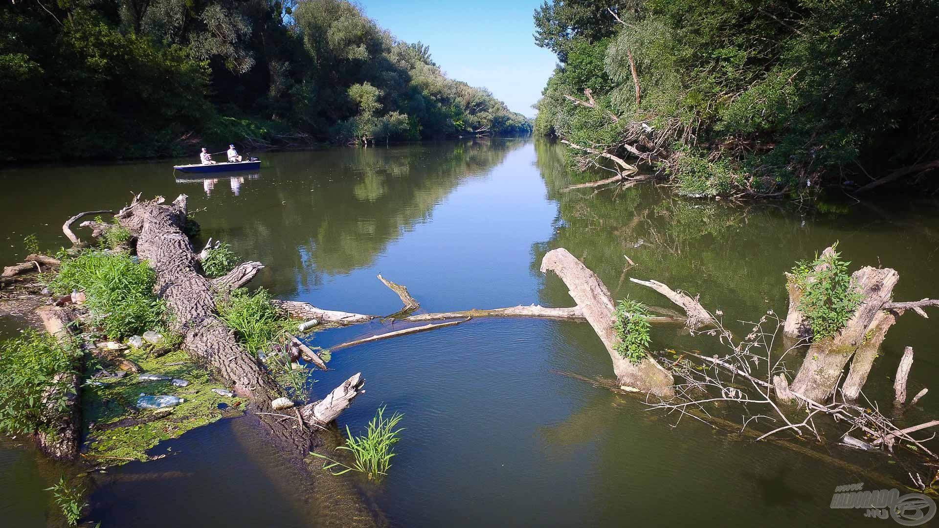 Rengeteg természetes akadót találtunk a folyón, és bíztunk benne, hogy rejtenek ragadozókat is