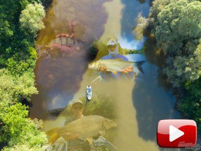 Pergető történetek – Bodrogi befolyó halai