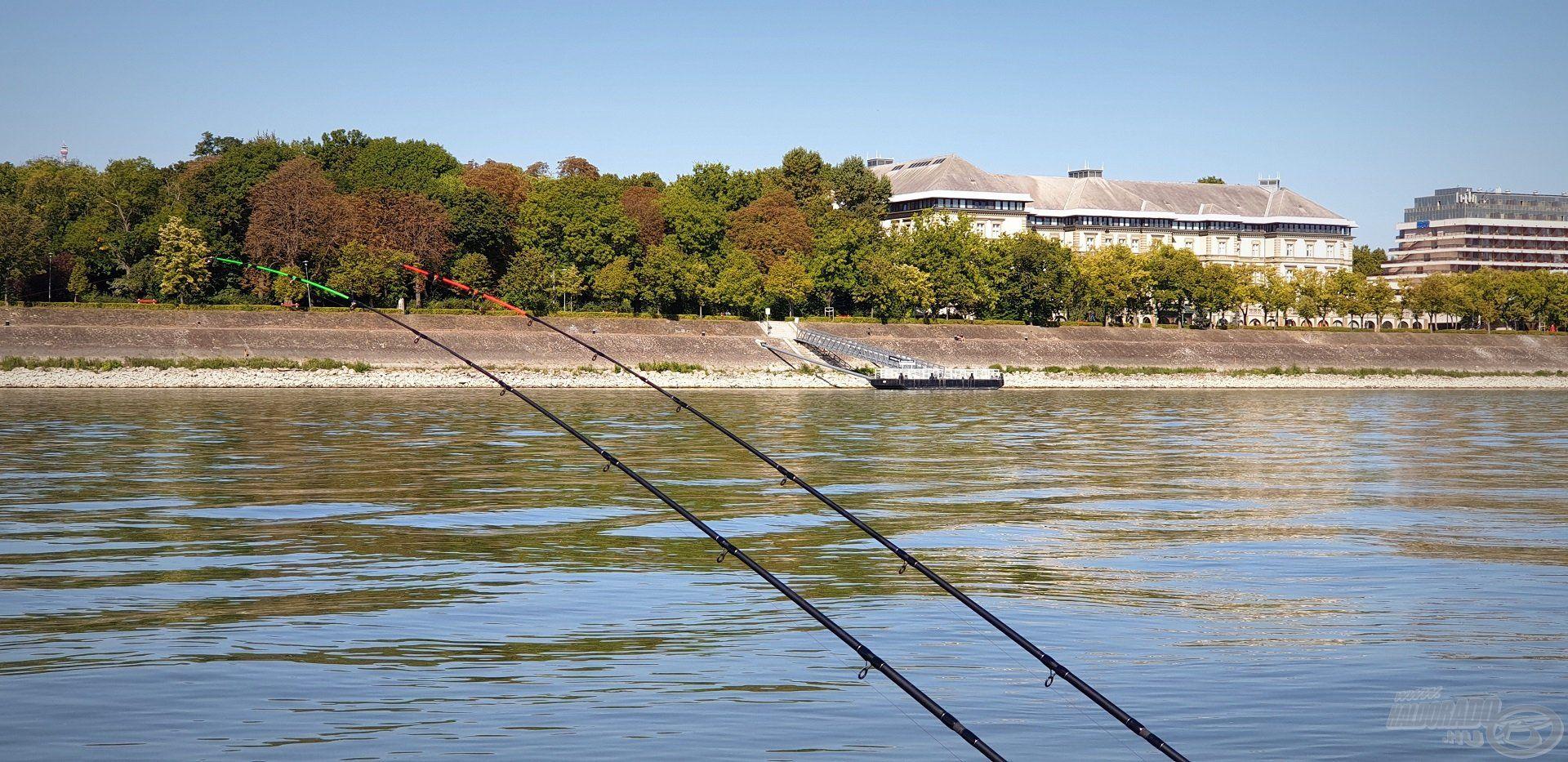 Velem szemben a Margit-sziget, mely szintén egyik kedvelt horgászhelyem volt a 90-es években