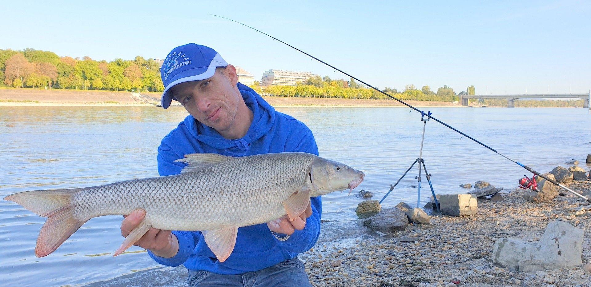 A Duna folyó egyik legszebb ajándékai ezek a csodálatos márnák!