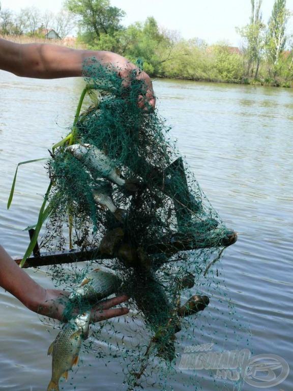 Az ilyen és ehhez hasonló hulladékok aljas csapdák az állatok számára…