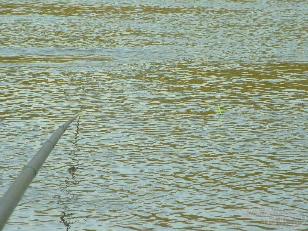 A nyolcgrammos úszó ide bizony kicsinek tűnik, túlságosan kifekteti a sodrás…