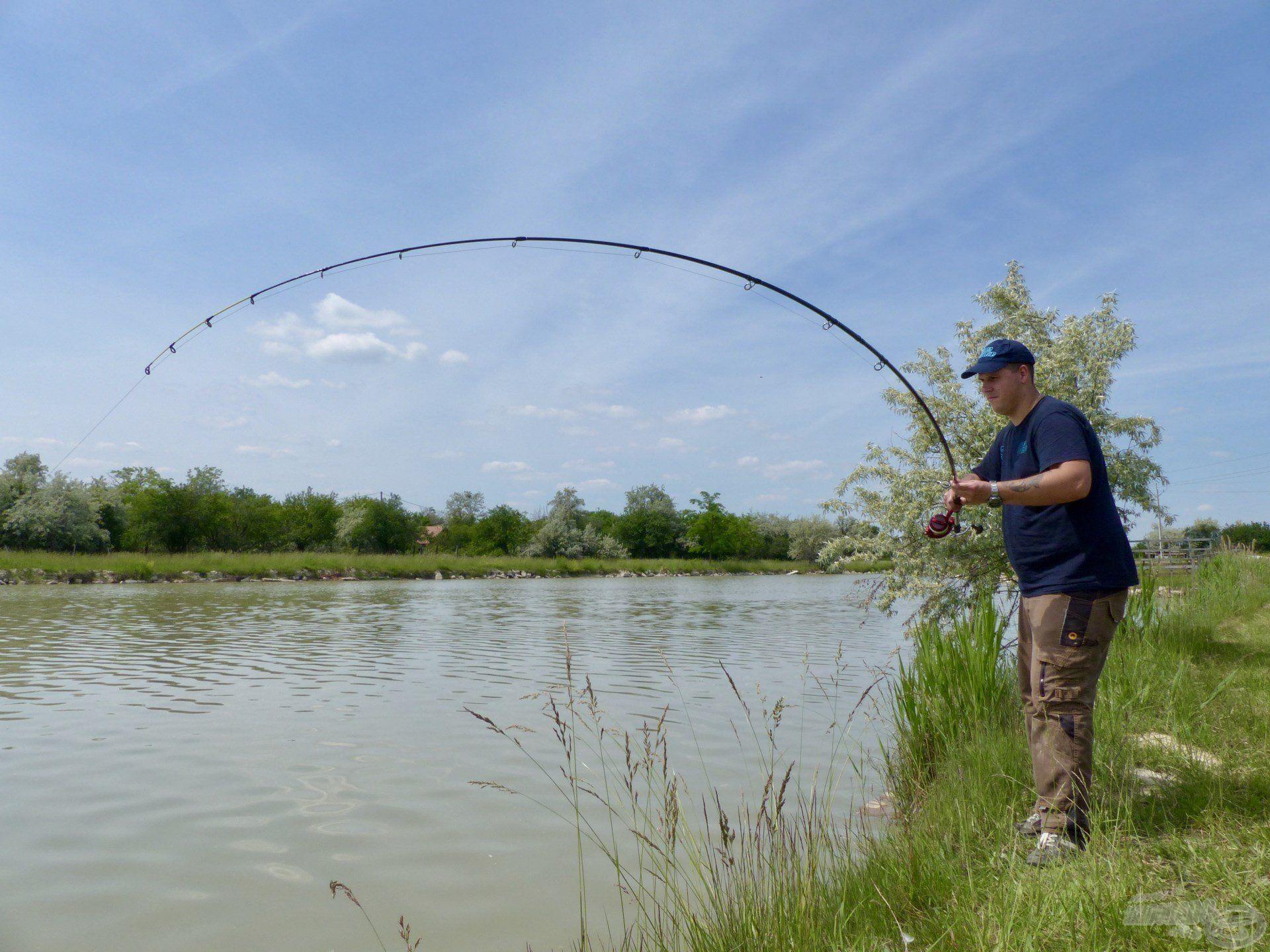 A választ hamarosan megkaptam, a horgászat legnagyobb hala küzdött a horgomon…