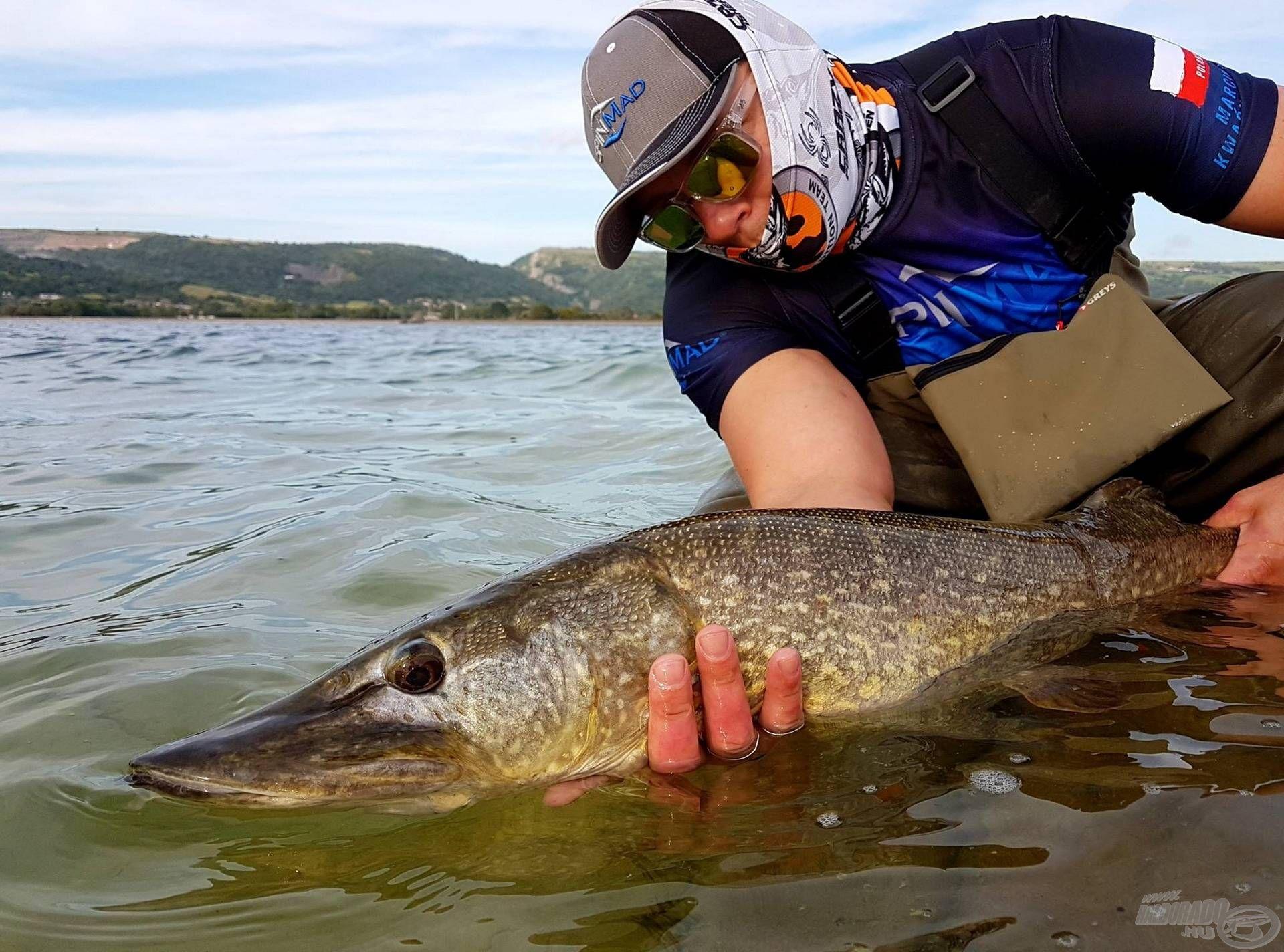Szakértelmük kellő elhivatottsággal és a halak tiszteletével párosul