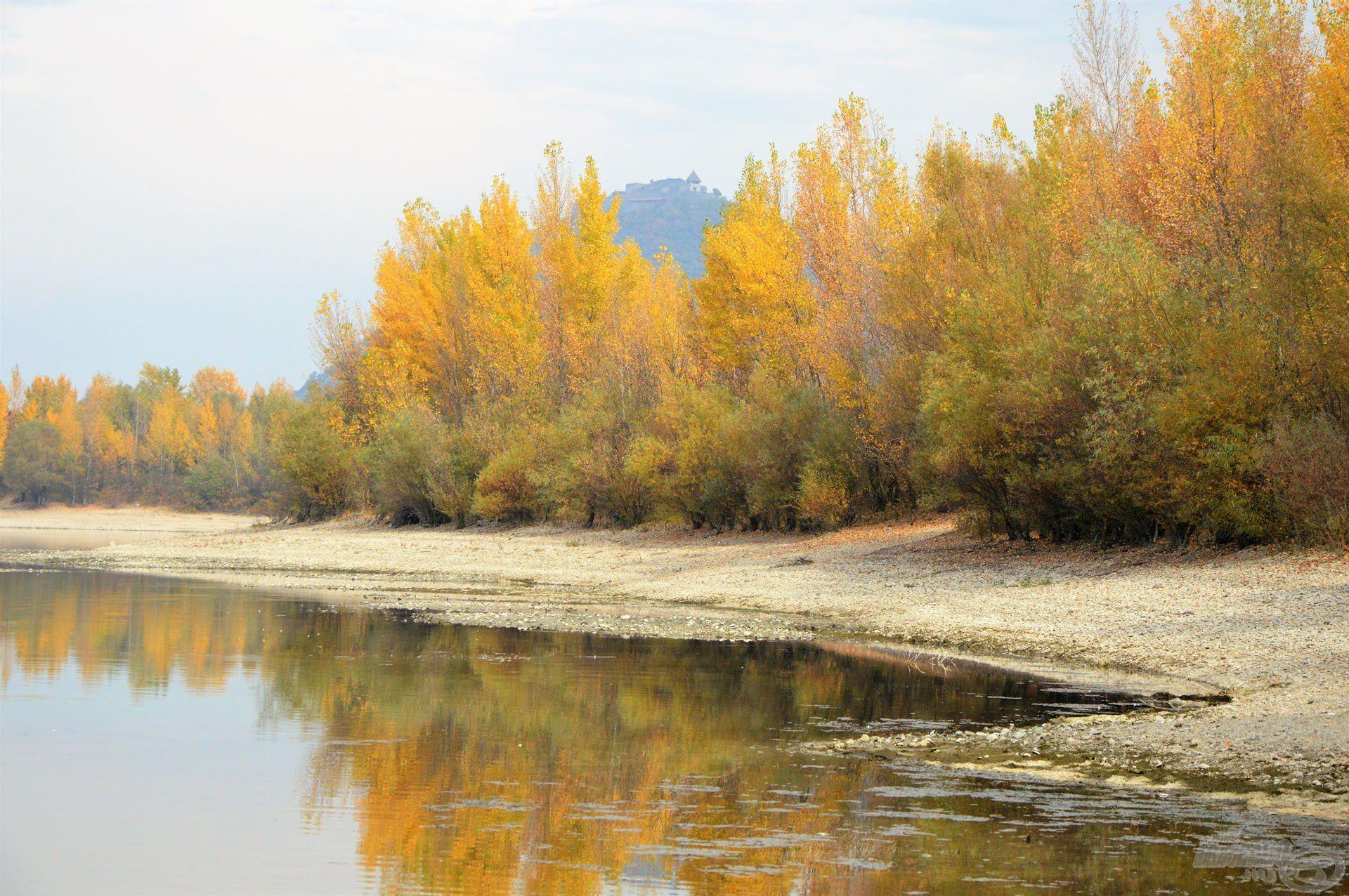 A Duna-öblök igazán remek horgászhelyeket rejtenek